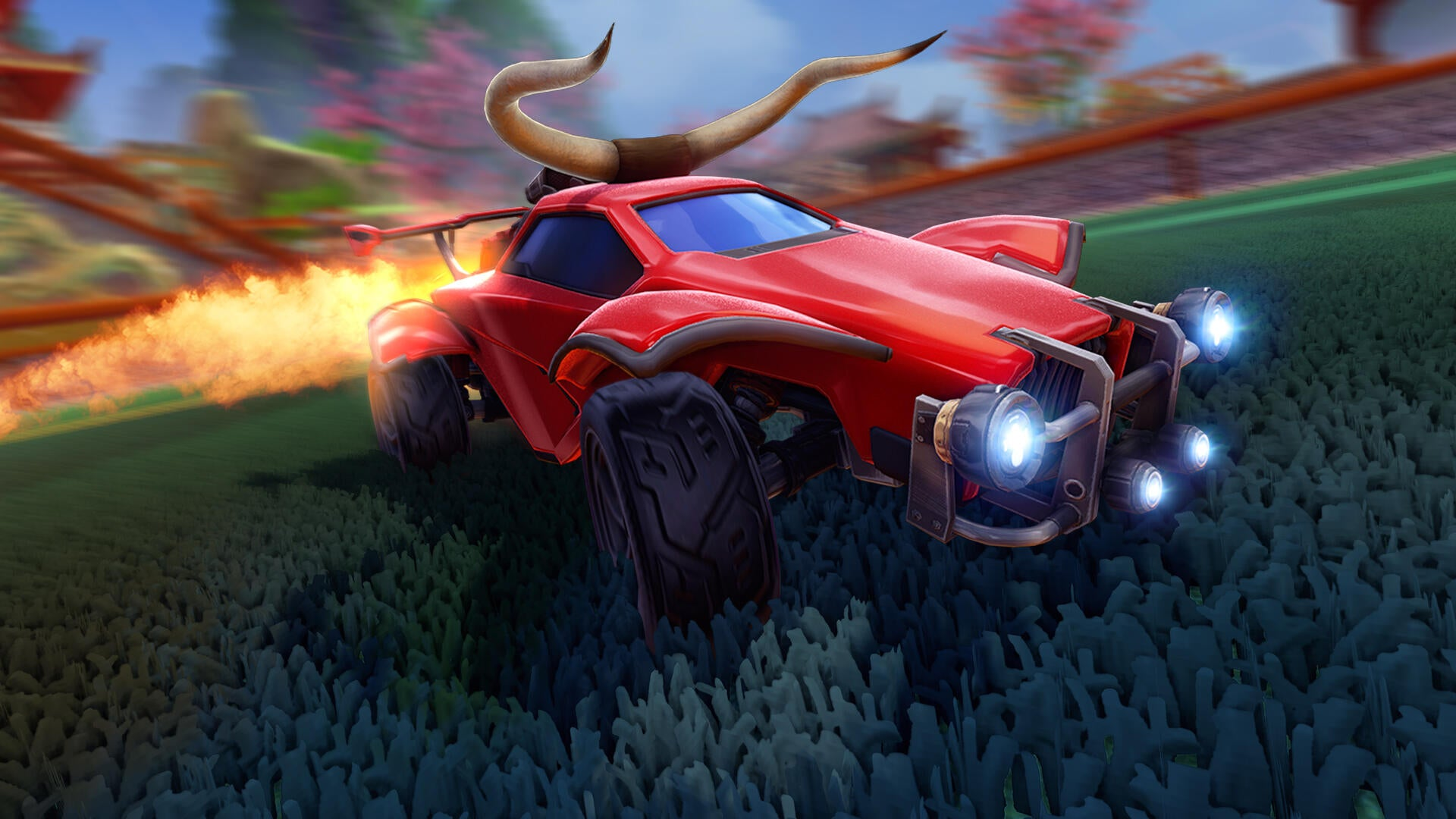 Ox Horn Topper